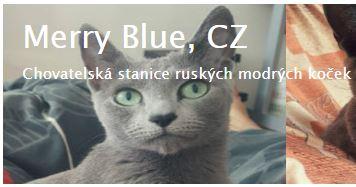merry blue